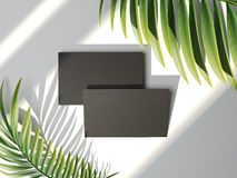 Black business cards and palm leafs. 3d rendering. Black business cards and palm leafs. Summer vacation concept. 3d rendering Stock Photography