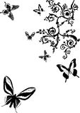 Black butterflies and curls Stock Photography