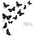 Black butterflies design and abstract decorative flowers greeting card vector background Stock Photos