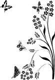 Black butterflies and floral curls illustration Stock Images