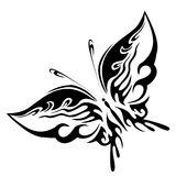 Black butterfly Stock Image