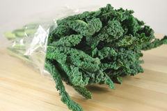 Black cabbage, italian kale Stock Images