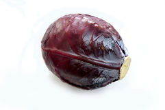 Black cabbage pictures on a white background.  royalty free stock photography