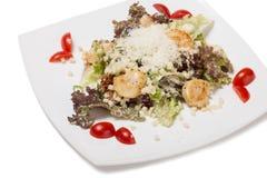 Black Caesar salad with scallops. Royalty Free Stock Photos