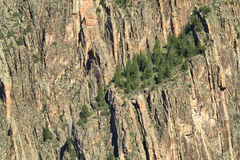 Black Canyon. Of the Gunnison - National Park, Colorado, USA royalty free stock photography