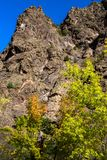 Autumn colors, steep cliffs, and blue skies at Black Canyon of the Gunnison National Park. Autumn colors brighten the road to the Gunnison River at Black Canyon stock image