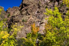 Autumn colors, steep cliffs, and blue skies at Black Canyon of the Gunnison National Park. Autumn colors brighten the road to the Gunnison River at Black Canyon stock photography