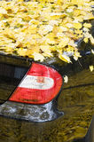 Black car covered with yellow autumn leaves Stock Image
