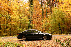 Black car in the forest. A black car in the forest in France in Autumn Royalty Free Stock Photography