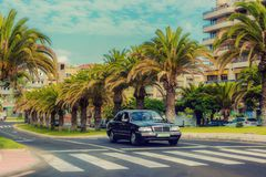 Black car rides on the road on the background of a beautiful urban landscape of palm trees stock photos