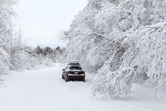 Black car standing on winter country road Royalty Free Stock Photography