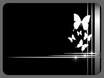 Black card with butterflies Stock Photo