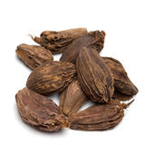 Black cardamom Stock Photo