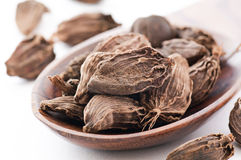 Black Cardamom Stock Images