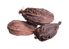 Black cardamom, also known as hill cardamom, Bengal cardamom, greater cardamom, Indian cardamom, Nepal cardamom, winged cardamom, stock photography