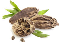 Black cardamom pods Royalty Free Stock Images