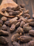 Black cardamom pods in the wooden spoon Royalty Free Stock Photos