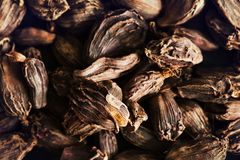 Black cardamom seeds in wooden bowl. Aromatic, traditional ingre Stock Image