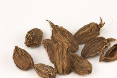 Black Cardamons. Isolated on a white background Royalty Free Stock Image