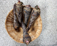 Black carrot. Daucus carota, the fleshy roots are sliced and used in preparation of cooling drink Kanji in India along with spices stock photos