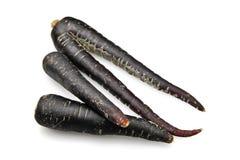 Black Carrot, scortzonera Royalty Free Stock Photos