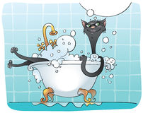 Black cat in bath Royalty Free Stock Images