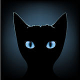 Black cat blue eyes. Silhouette of black cat with blue eyes on a dark background royalty free illustration