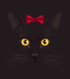 Black cat with bow. Muzzle of short-haired black cat with big yellow eyes, with stylish red bow on head top, at dark background Stock Image