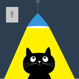 Black cat and ceiling light lamp. Yellow ray of light. Flat design. Royalty Free Stock Photos
