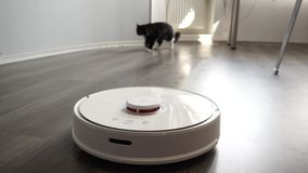 Black cat chasing smart robot vacuum cleaner with interest.