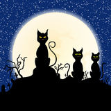 Black cat on chimney with moon and starry night Stock Image