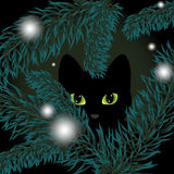 Black cat in a Christmas tree Royalty Free Stock Photos