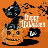 Happy Halloween from the black cat royalty free illustration