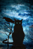 Black cat and crows Royalty Free Stock Photography