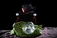 Black Cat with a Crystal Skull Royalty Free Stock Photography