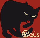 Black cat on dark red background Stock Photos