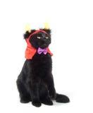 Black cat with devil horns. Black cat wearing devil horn at for Halloween on white background stock image