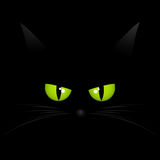 Black cat face background Royalty Free Stock Photo