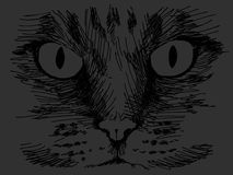 Black cat face. Hand drawn black cat face Royalty Free Stock Images