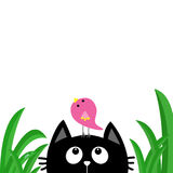 Black cat face head silhouette looking up to bird on head. Green grass dew drop. Cute cartoon character. Kawaii animal. Baby card. Stock Images