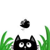 Black cat face head silhouette looking up to flying bird. Green grass dew drop. Cute cartoon character. Kawaii animal. Baby card. Royalty Free Stock Photo