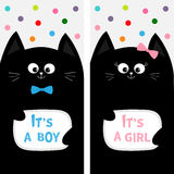 Black cat family couple with bow. Flyer poster set. Cute funny cartoon character. Its a boy girl. Baby shower greeting card. Flat. Design. White background Stock Image