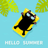 Black cat floating on yellow air pool water mattress. Hello Summer. Palm tree leaf. Cute cartoon relaxing character. Sunglasses. S Royalty Free Stock Photography