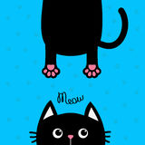 Black cat Funny face head silhouette. Meow text. Hanging fat body with paw print, tail. Cute cartoon character. Kawaii animal.. Baby card. Pet collection. Flat Stock Image