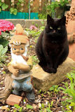 Black Cat and gartenzwerg garden gnome Stock Images