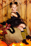 Black cat girl Royalty Free Stock Images