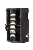 Black cat in grey cat scratcher Royalty Free Stock Image