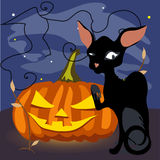 A black cat with a grinning pumpkin Royalty Free Stock Photos