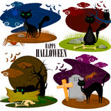 Black cat in Halloween background Stock Images