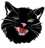 Black cat. Hand-drawing the muzzle of a black cat on a white background royalty free illustration
